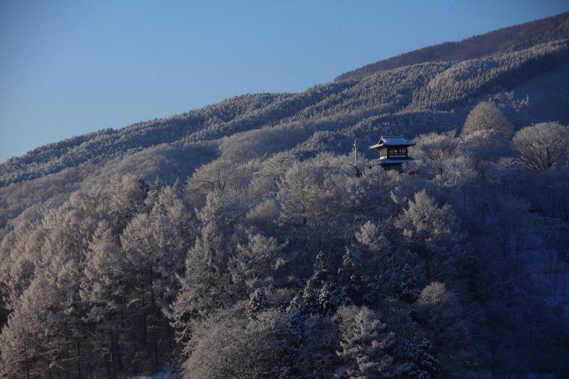雪の朝(1月25日)_f0075075_8471292.jpg