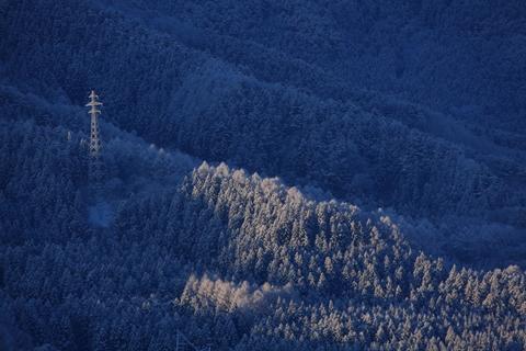 雪の朝(1月25日)_f0075075_8472591.jpg