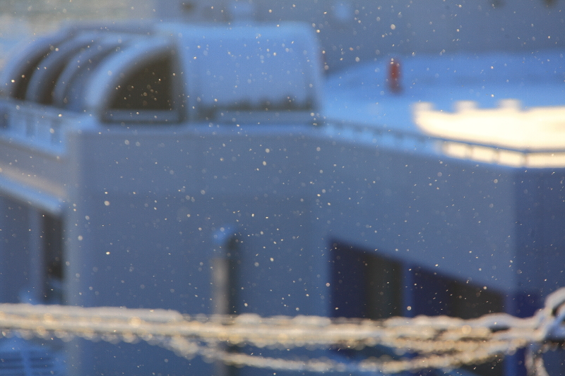 雪の朝(1月25日)_f0075075_848017.jpg