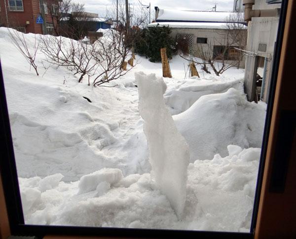 この冬4回めの雪下ろしと、雀ちゃん_a0136293_17303034.jpg