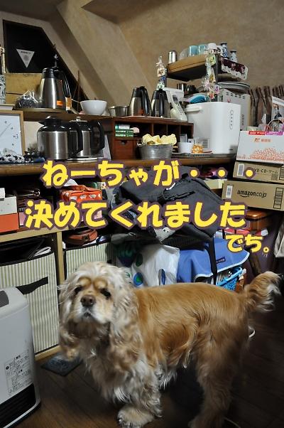 b0067012_0112461.jpg