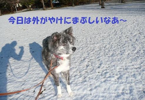 f0121712_14374728.jpg