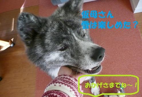 f0121712_15174366.jpg
