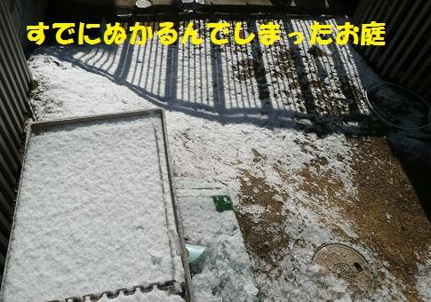f0121712_1582194.jpg