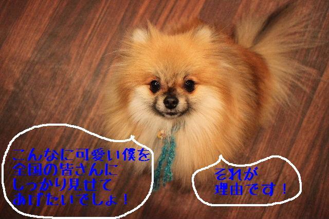 b0130018_1801551.jpg