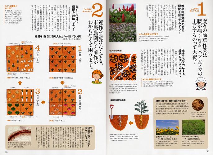 「趣味の園芸 やさいの時間」(NHK出版)2012年2月号 「初めての緑肥」内のイラストを描きました。_f0134538_85635.jpg
