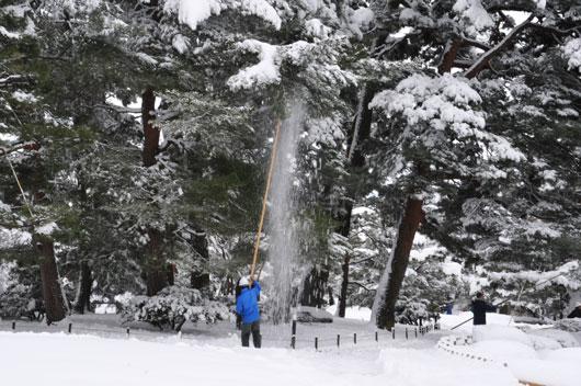 雪の兼六園(1)_c0093046_1739110.jpg