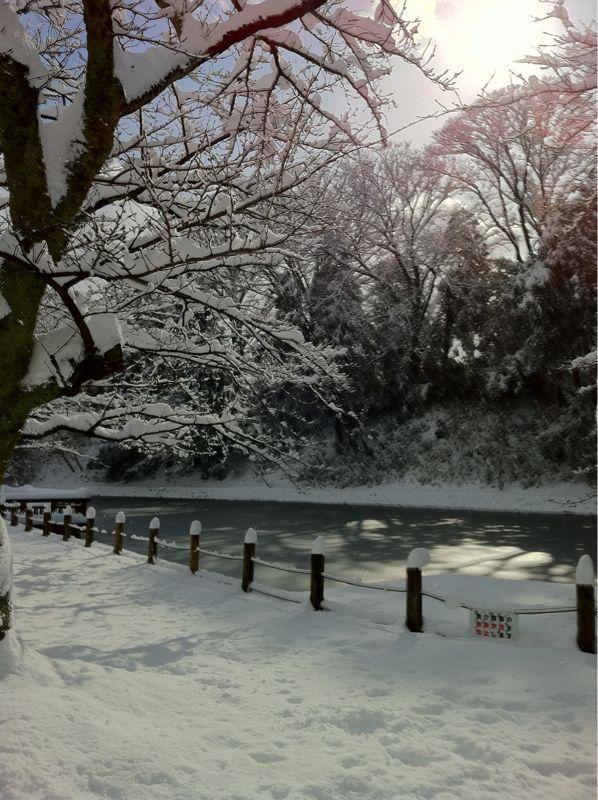 雪の大手堀_c0110051_10591637.jpg