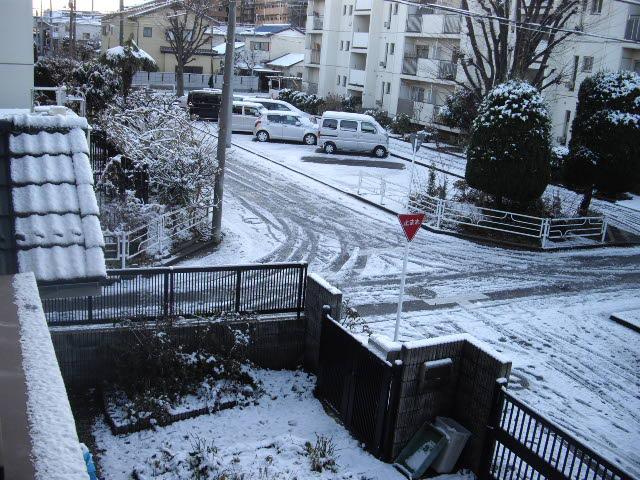 カラカラ天気のあとは雪だった・・・_d0116059_13504215.jpg