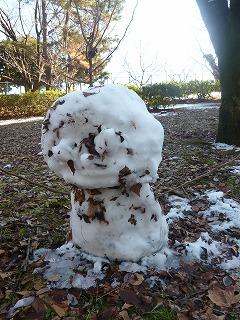 with snow   犬がくれたシアワセなひととき♪_a0165160_5564583.jpg