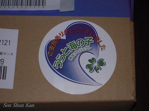 「うらと海の子再生プロジェクト」からの贈り物_a0164068_2314647.jpg