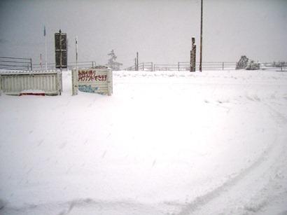 今日も大雪になりそうなので_f0009169_9105047.jpg