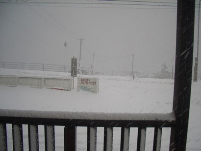 今日も大雪になりそうなので_f0009169_9112999.jpg