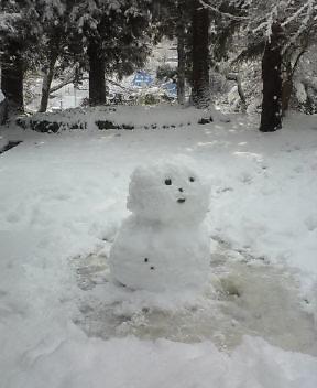 ちょっとほっとけない雪だるま_f0168392_2134877.jpg