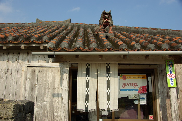 八重山のシーサーたち/Shisa of Yaeyama Islands, Okinawa_e0140365_1575724.jpg