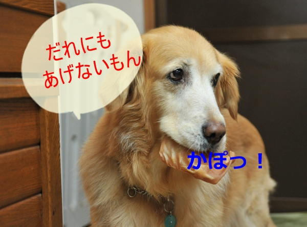 e0020166_16565913.jpg