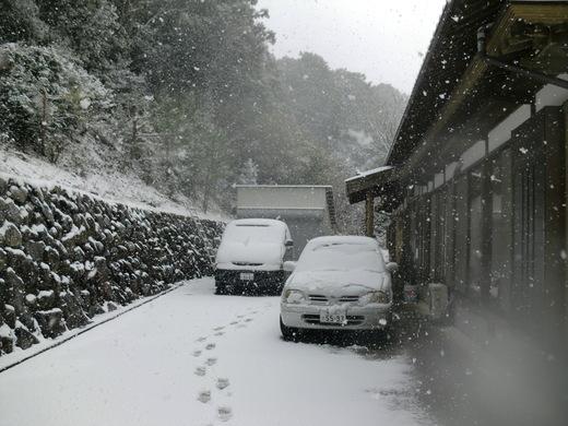雪が降りました_d0251679_120521.jpg