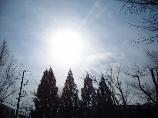やっぱり寒い・・・_f0183480_13254627.jpg