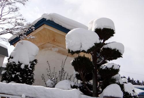 弘前の雪景色から、地吹雪の様子まで^^_a0136293_161038.jpg