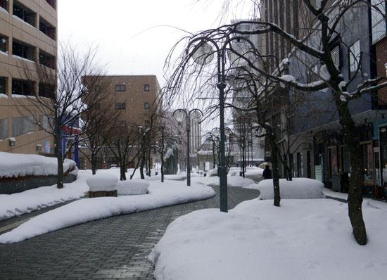 弘前の雪景色から、地吹雪の様子まで^^_a0136293_1613233.jpg