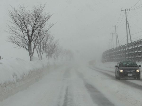 弘前の雪景色から、地吹雪の様子まで^^_a0136293_16223027.jpg