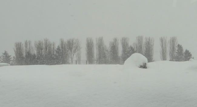 弘前の雪景色から、地吹雪の様子まで^^_a0136293_16234944.jpg