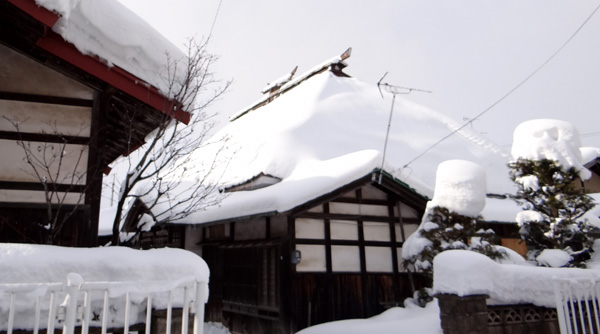 弘前の雪景色から、地吹雪の様子まで^^_a0136293_169418.jpg