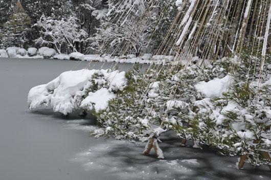 雪の兼六園(2)_c0093046_17144878.jpg