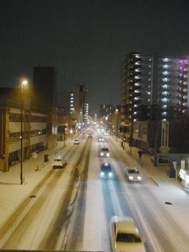昨夜の雪降り _e0140354_1314197.jpg
