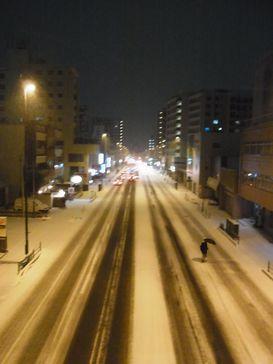 昨夜の雪降り _e0140354_13144352.jpg