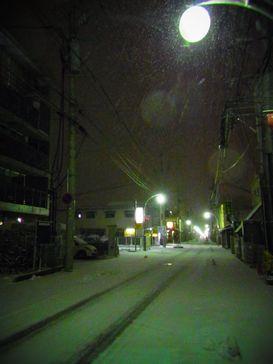 昨夜の雪降り _e0140354_1392934.jpg