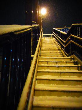 昨夜の雪降り _e0140354_14123687.jpg