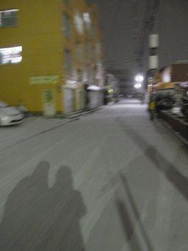 昨夜の雪降り _e0140354_14131552.jpg