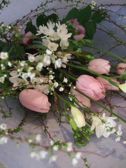 オークリーフ(淡いピンクの花)_f0049672_17413330.jpg