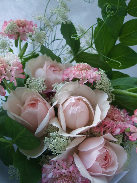 オークリーフ(淡いピンクの花)_f0049672_17422613.jpg