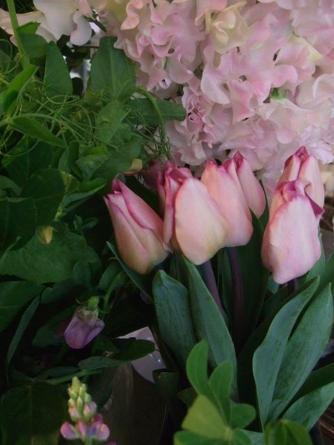 オークリーフ(淡いピンクの花)_f0049672_17451933.jpg