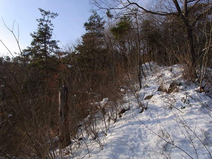 2012.1.28 中央線Southソロハイク ~低山のFlat&Longな尾根を探しに~_b0219778_2152085.jpg