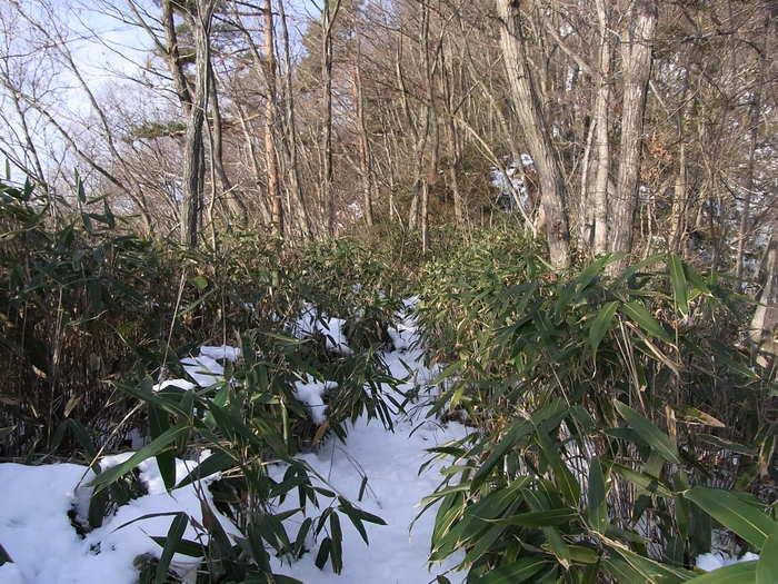 2012.1.28 中央線Southソロハイク ~低山のFlat&Longな尾根を探しに~_b0219778_2194214.jpg