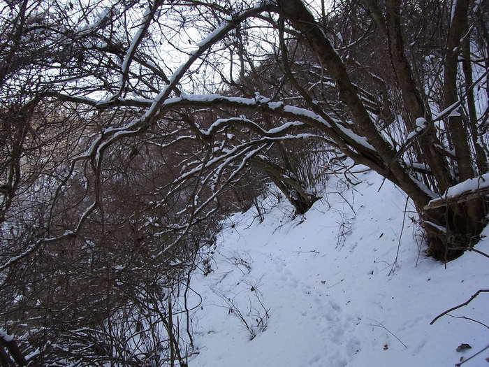 2012.1.28 中央線Southソロハイク ~低山のFlat&Longな尾根を探しに~_b0219778_22265492.jpg