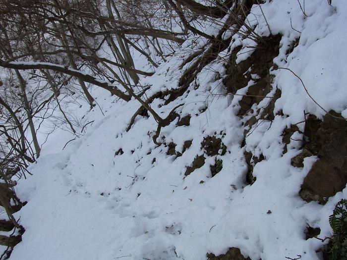 2012.1.28 中央線Southソロハイク ~低山のFlat&Longな尾根を探しに~_b0219778_2229423.jpg