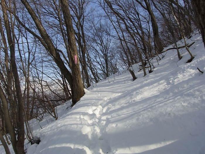 2012.1.28 中央線Southソロハイク ~低山のFlat&Longな尾根を探しに~_b0219778_22305154.jpg