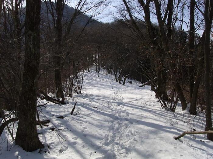 2012.1.28 中央線Southソロハイク ~低山のFlat&Longな尾根を探しに~_b0219778_224437.jpg