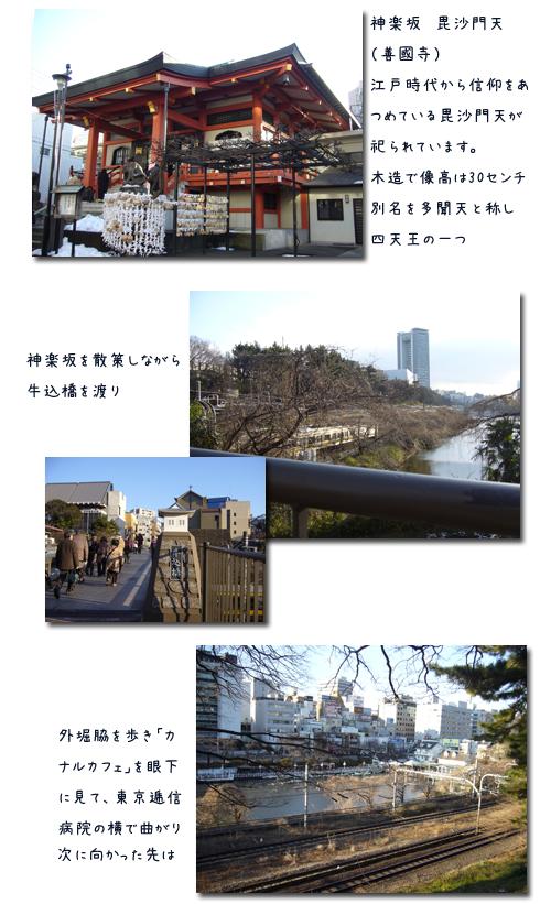 早稲田から九段までのウォーキングで新年会_c0051105_0391066.png