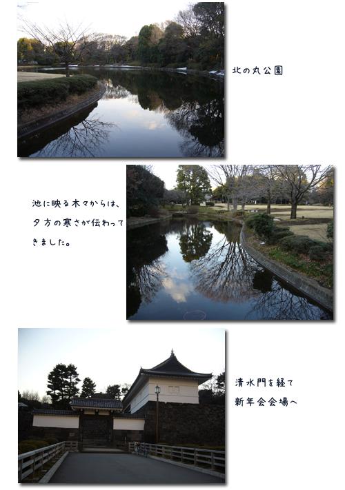 早稲田から九段までのウォーキングで新年会_c0051105_0401770.png