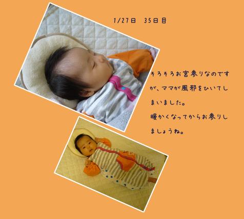 寒い日曜日_c0051105_15505422.png