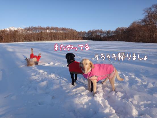 この冬一番の冷え込みに_f0064906_20163020.jpg