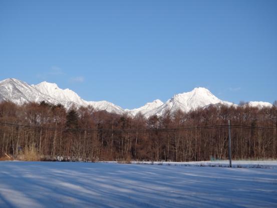 この冬一番の冷え込みに_f0064906_2021370.jpg