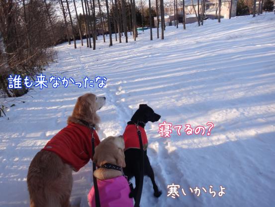 この冬一番の冷え込みに_f0064906_202344.jpg