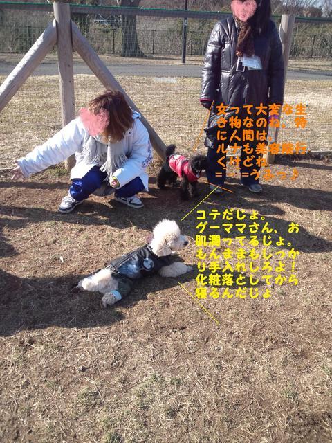 e0246708_20112763.jpg
