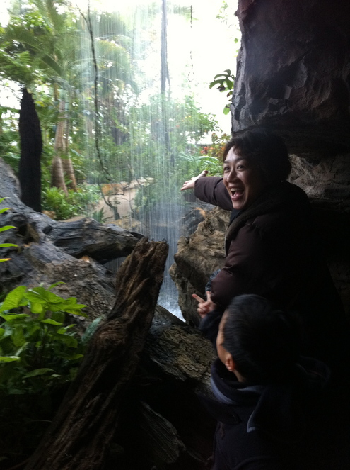 県立植物園へ_a0126418_9414100.jpg